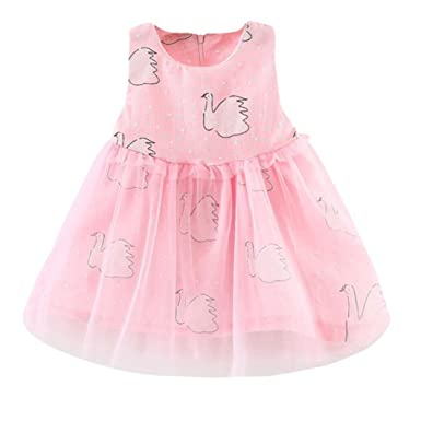 Amazon.com: Winsummer Toddler Baby Girls Swan Dress Party Gown Lace ...