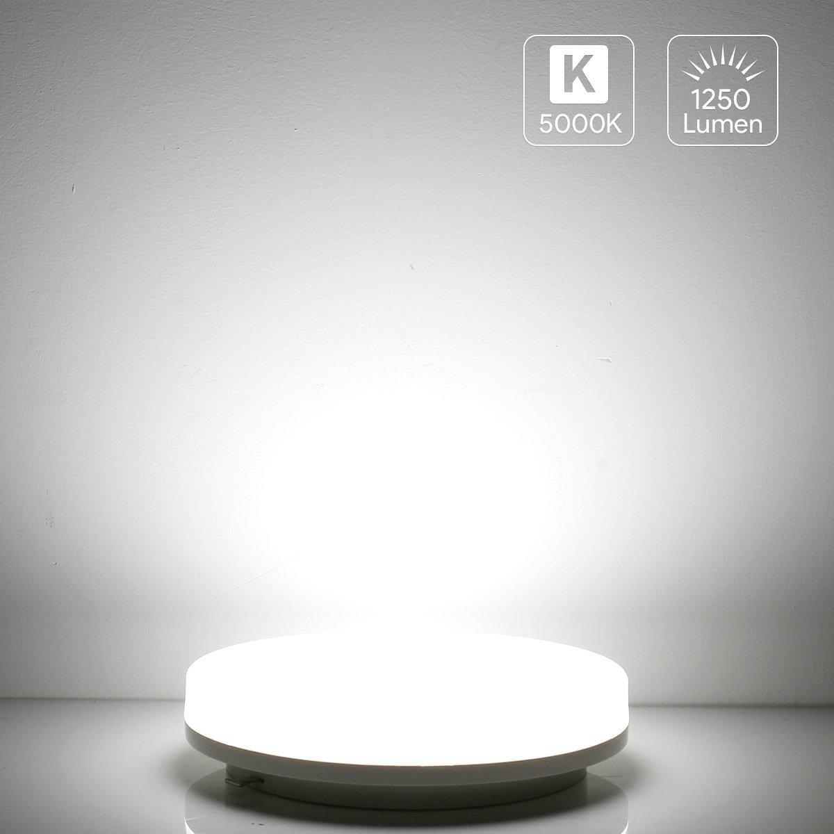 LE Plafón LED Regulable 24W IP54 Baños y Cocinas, Blanco frío, Equivalencia Fluorescente 50W, Resistente al agua [Clase de eficiencia energética A+] Lighting EVER