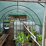 Quictent-2-Doors-Heavy-Duty-20x10x6-Portable-Greenhouse-Large-Walk-in-Green-Garden-Hot-House-8-vents-2-doors-Perfect-Flow-through-Ventilation