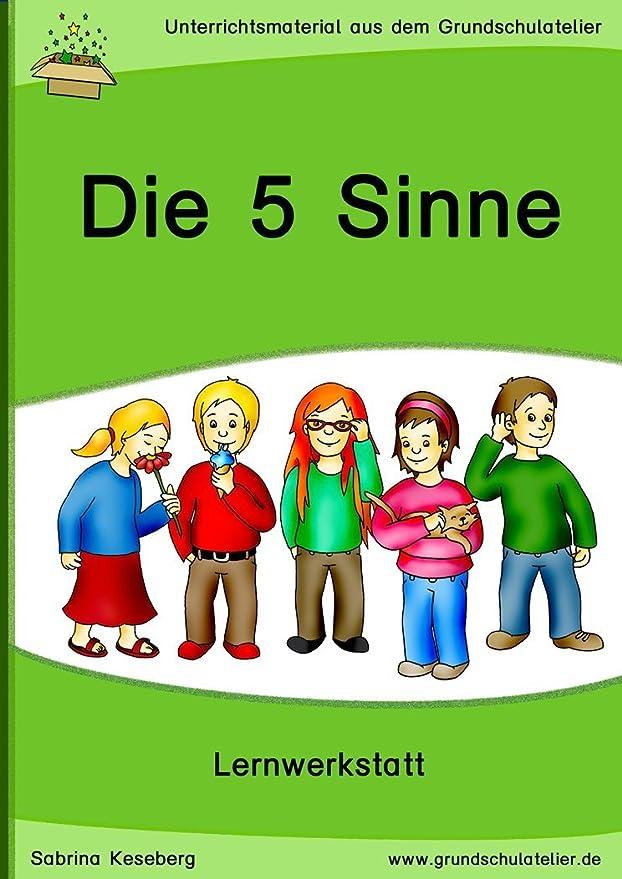 Die 5 Sinne (Lernwerkstatt für die Grundschule, Sachunterricht - CD ...