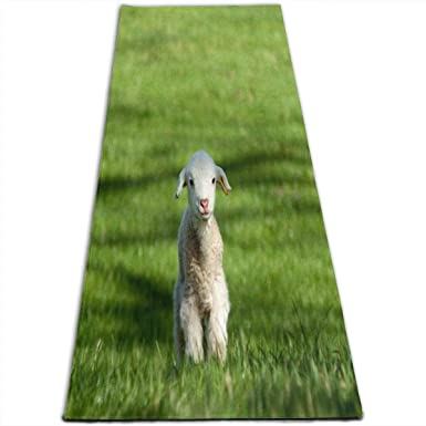 Amazon.com: Yoga Mat Lamb Grass Inspiring 1/4-Inch Thick ...