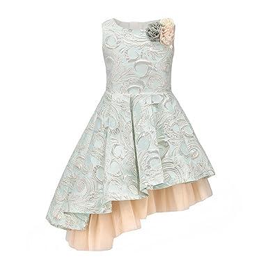0883f490bb2 Flower Dobby Girl Party Dresses for Kids Girl Clothes Bevel Hem Dress Light  Blue 3-