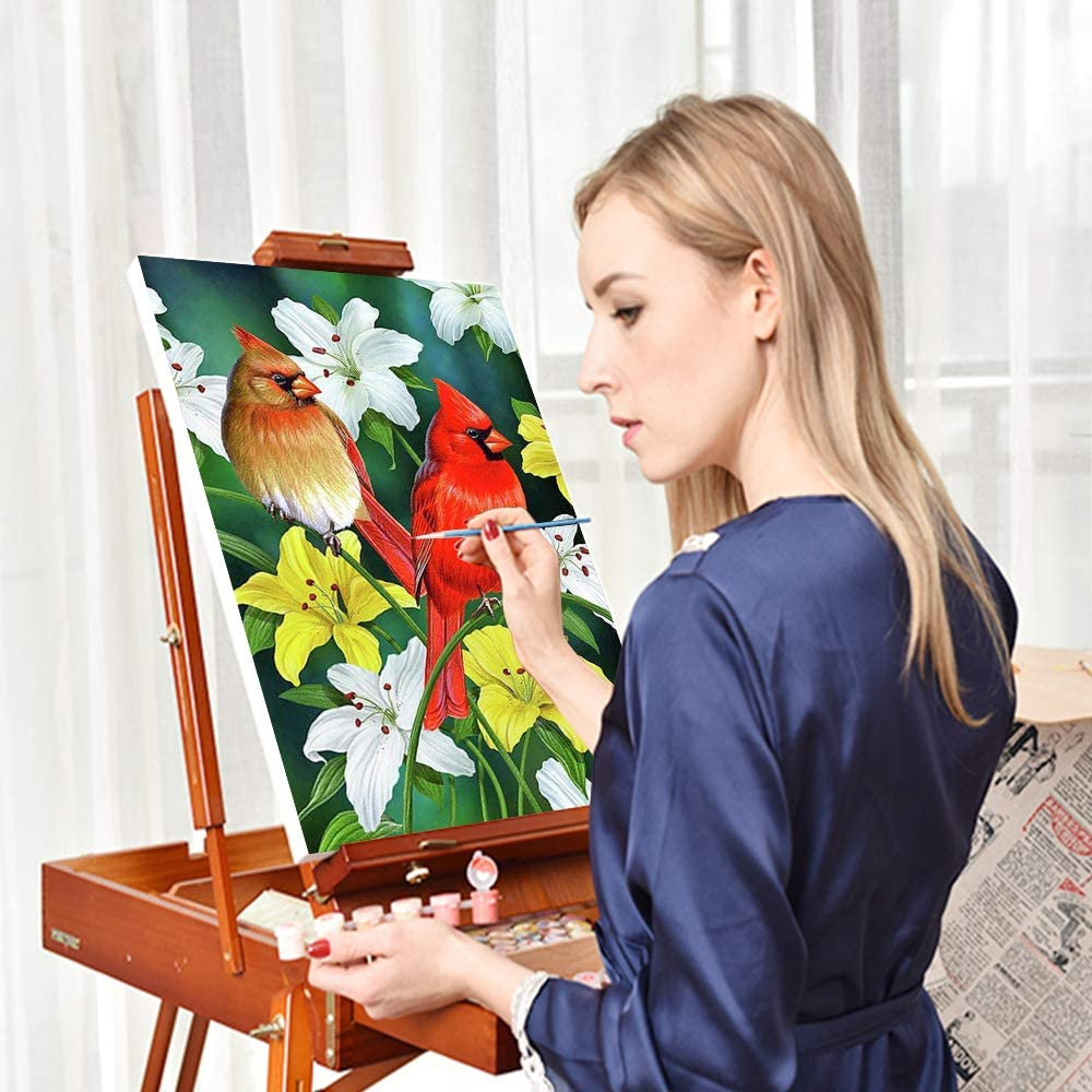 Geboor DIY Oil Painting Paint by Number Kits Painting for Adults and Kids Arts Craft for Home Wall Decor Cardinal 16x20