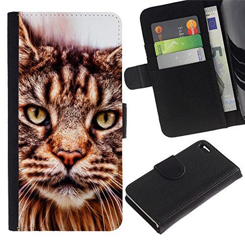 LASTONE PHONE CASE / Luxe Cuir Portefeuille Housse Fente pour Carte Coque Flip Étui de Protection pour Apple Iphone 4 / 4S / American Bobtail Maine Coon
