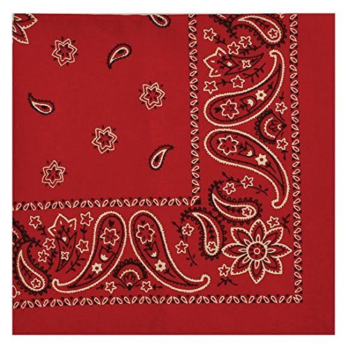 Red Bandana Fabric - DII Design Imports Down Home Country Western Red Bandana Print Napkins - Set of 4