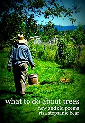 What to Do About Trees