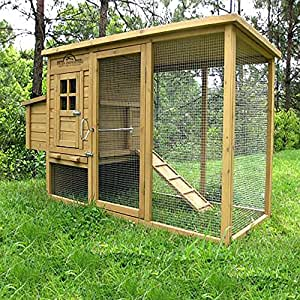 Amazon Com Pets Imperial Monmouth Large Chicken Coop 6ft