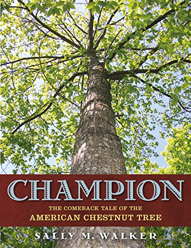 Champion: The Comeback Tale of the American Chestnut Tree