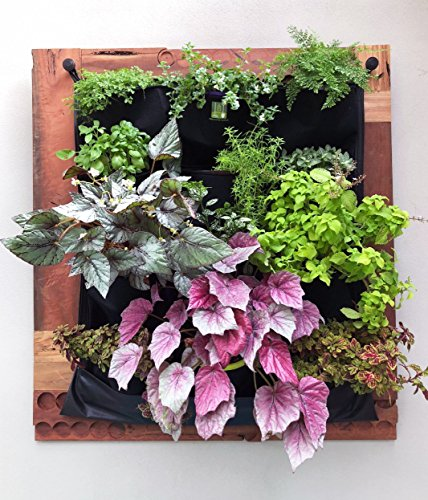 INDOOR Waterproof 12 Pocket Vertical Living Green Wall Planter by Delectable Garden