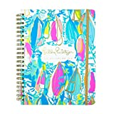 Lilly Pulitzer 17 month Jumbo Agenda 2017-2018 (Beach and Bae)