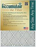 Accumulair Gold 16x22x1 (Actual Size) MERV 8 Air Filter/Furnace Filter (2 Pack)