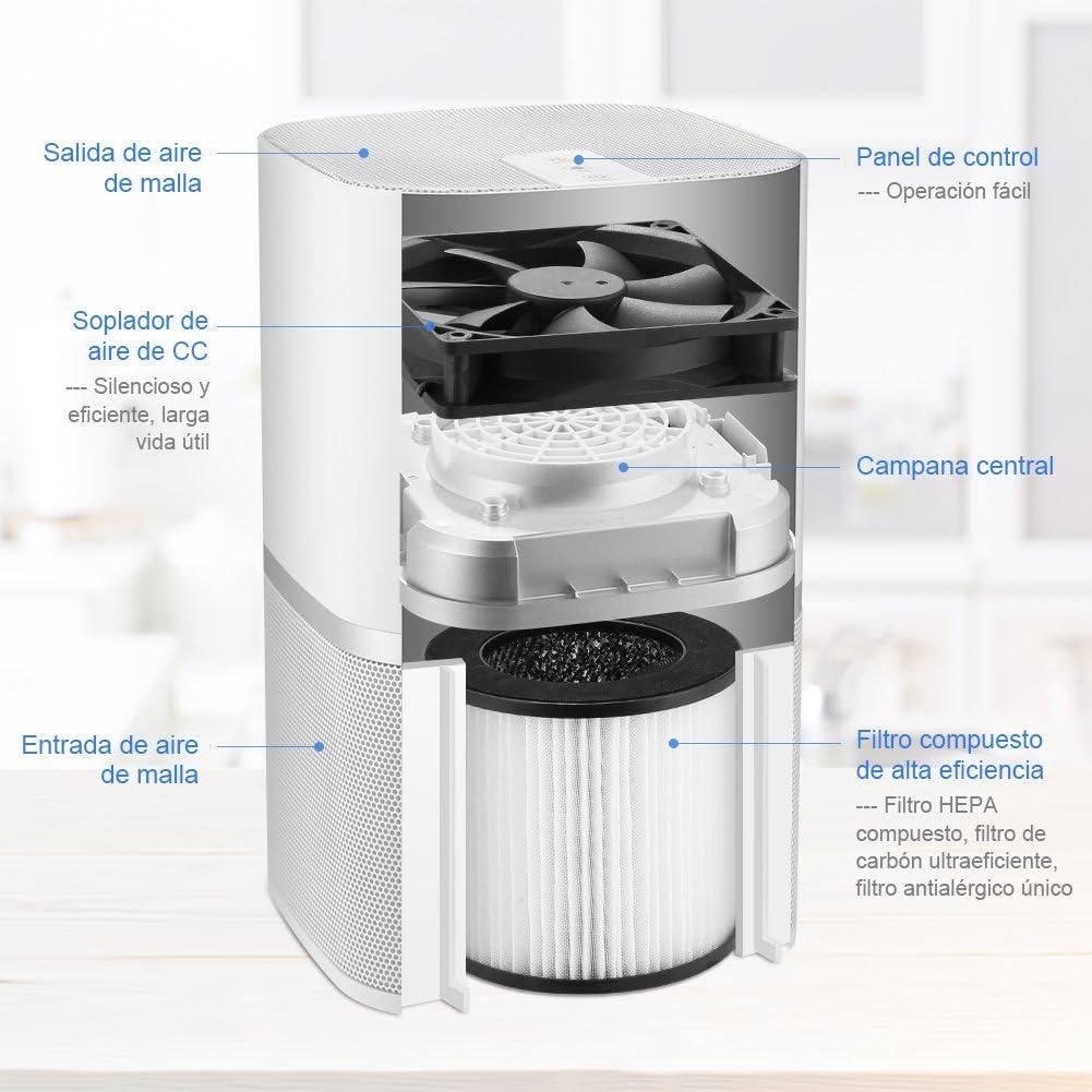 YISSVIC Purificador de Aire con Filtro HEPA y Filtro Carbón ...