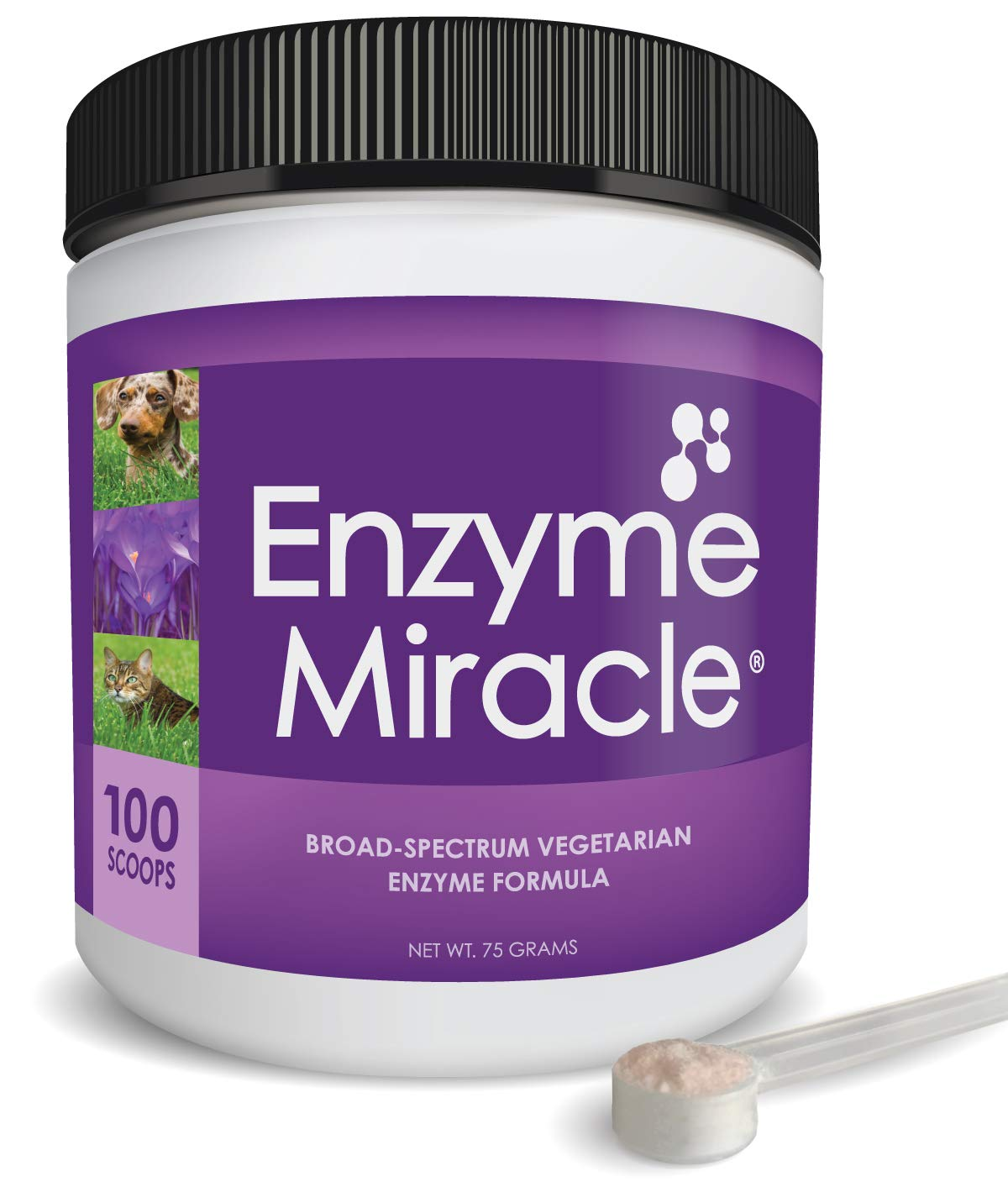 NUSENTIA Enzyme Miracle   Pet Enzymes (Advanced Plant-Based Powder) - 100 Servings - Systemic & Digestive Enzymes - Natural Supplement