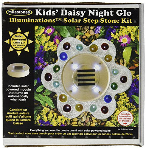 (Midwest Products Illuminations Solar Stepping Stone Kit, Kids' Daisy Night Glow)