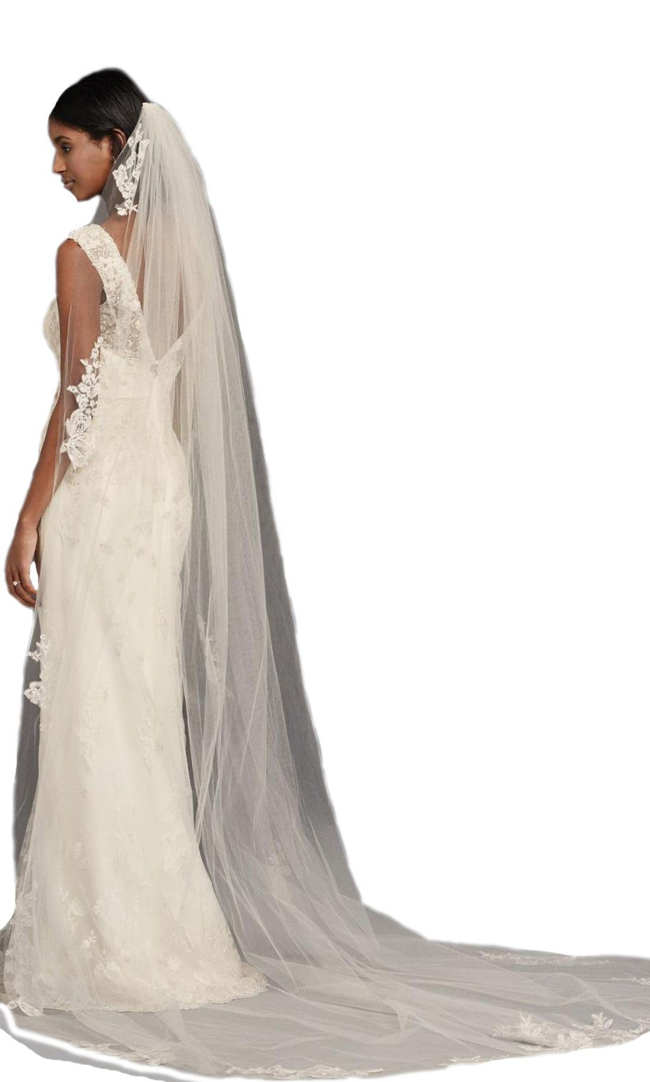 Passat Pale Ivory Single-Tier 3M Cathedral Sequin and Lace French Wedding Veil DB70