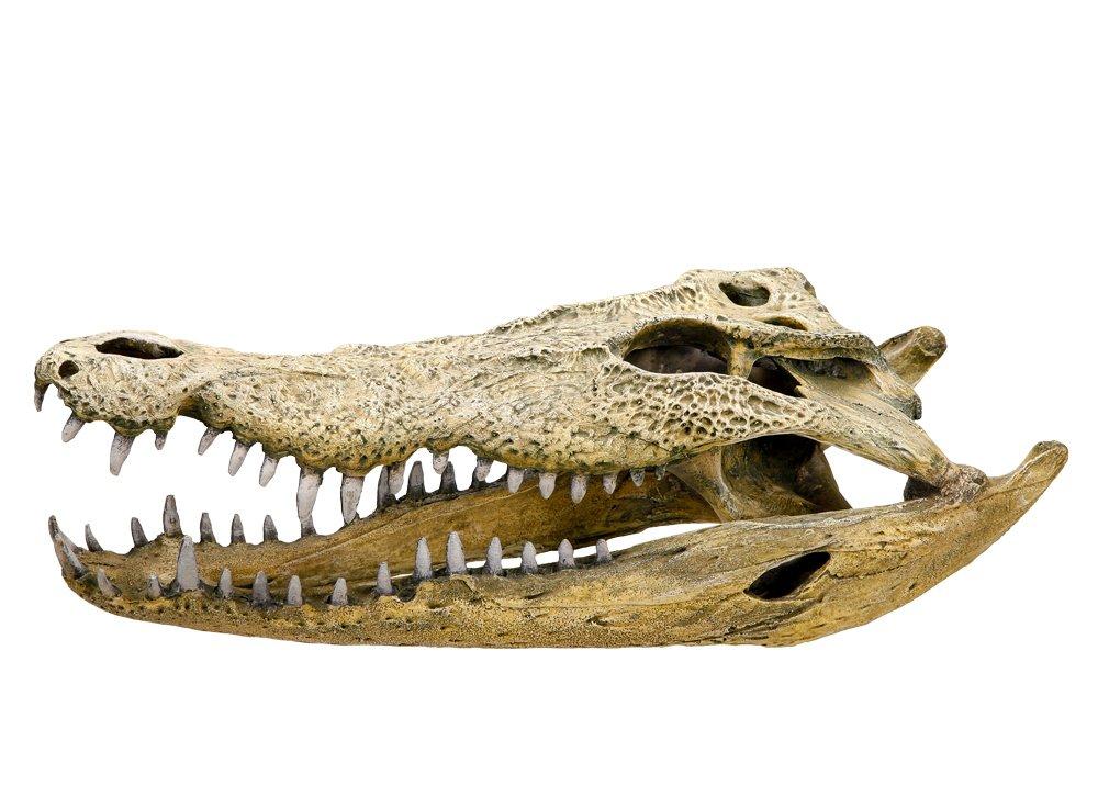 Nobby 28108 Aquarium Dekoration Aqua Ornaments, Krokodil Schädel ...