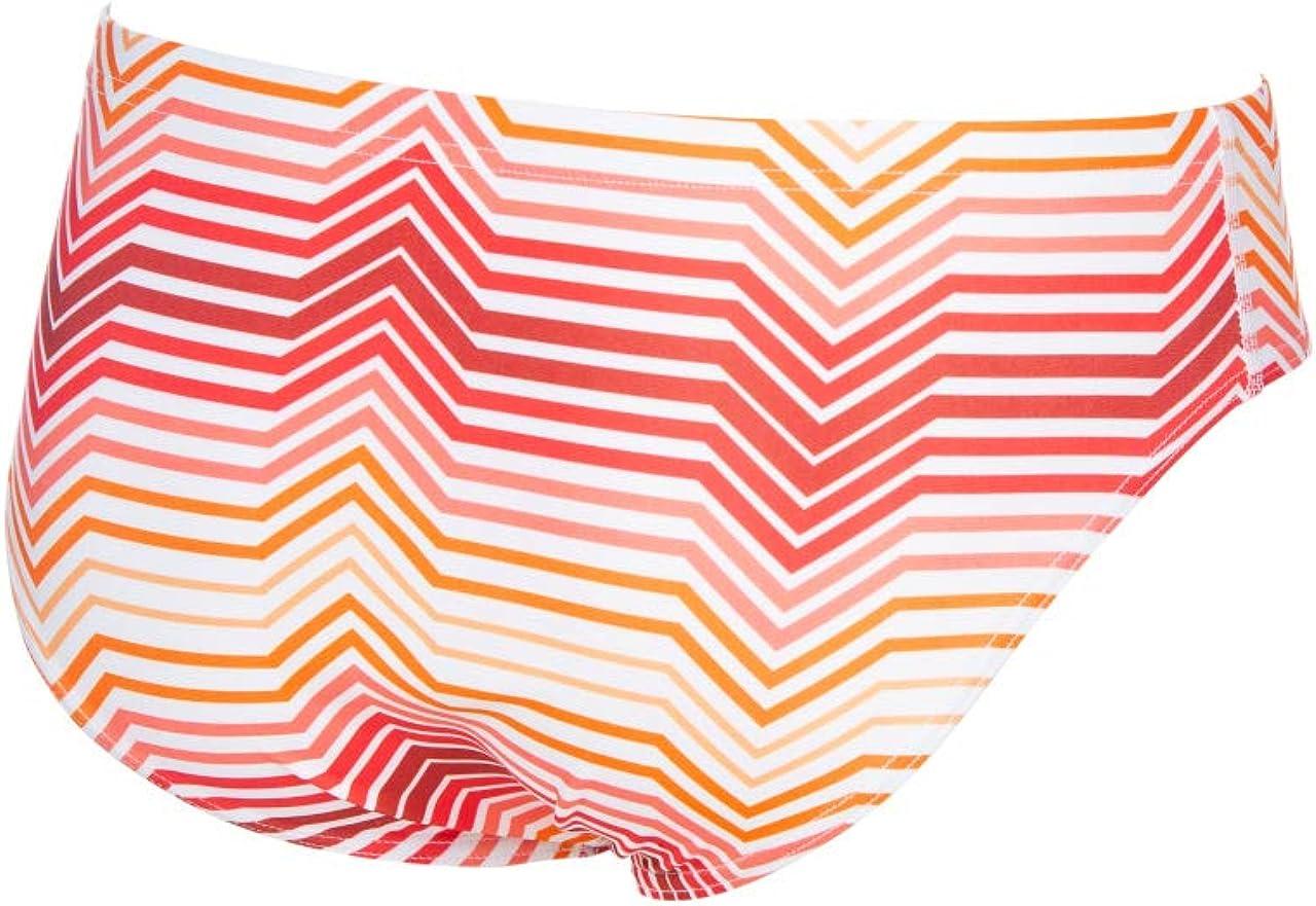 Arena Mens Multicolor Stripes MaxLife Brief Swimsuit