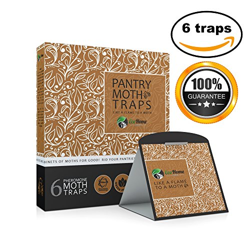 pantry-moth-traps-with-pheromone-attractants-heavy-duty-glue-6-pack-brown