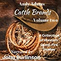 Cattle Brands: A Collection of Western Camp-Fire Stories, Volume 2 Audiobook by Andy Adams Narrated by John Burlinson