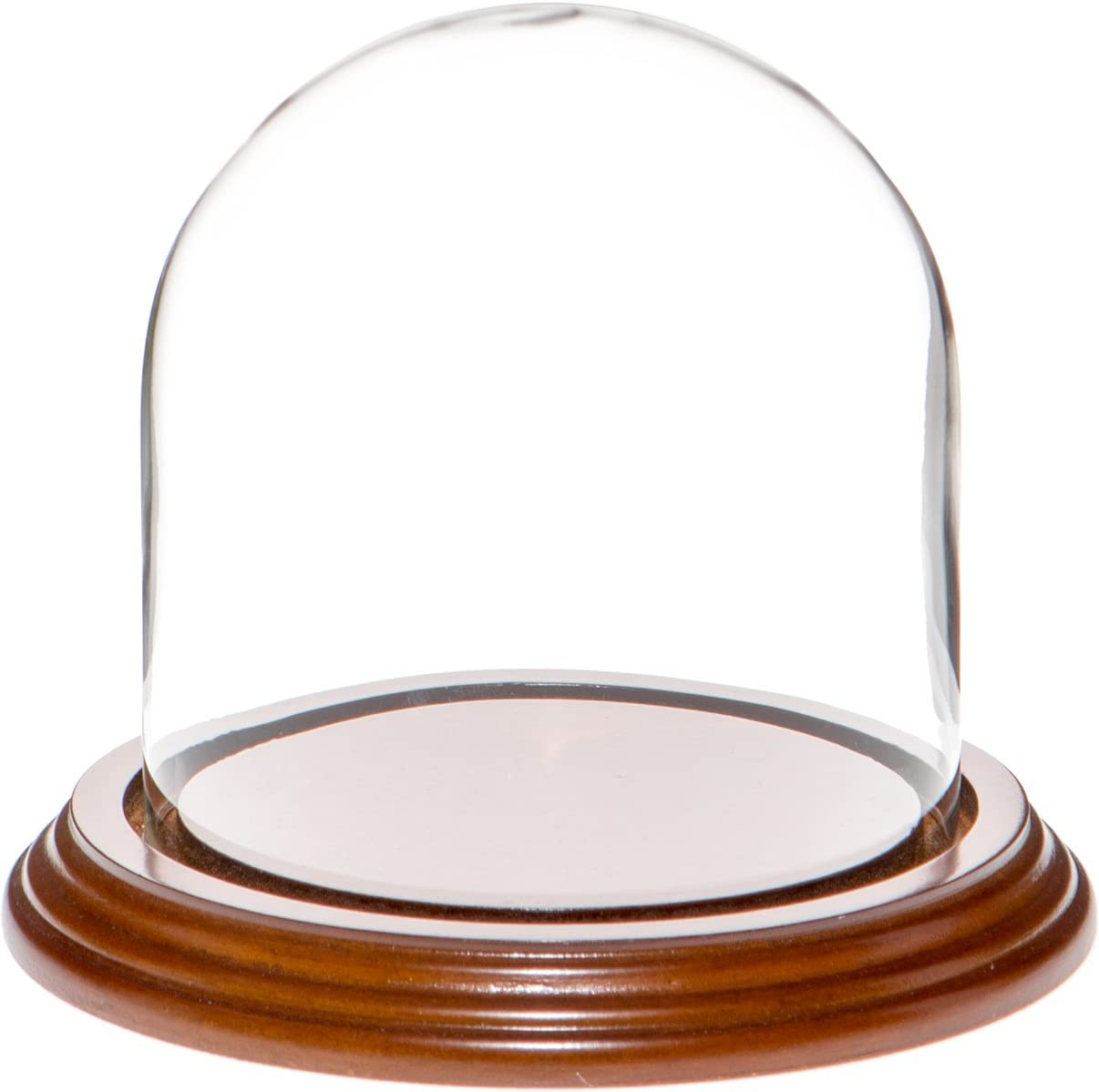 "Plymor 4"" x 4"" Glass Display Dome Cloche (Walnut Veneer Base)"