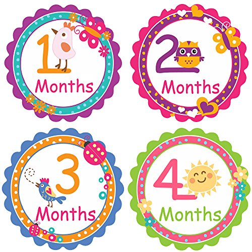 PAMBO Monthly Baby Stickers 16Pcs | Waterproof Milestone Newborn Stickers for Boys & Girls | Ideal For Scrapbooking, Important Events & Celebrations, Photo Keepsake, Craft Projects & Baby Shower