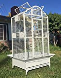 New Elegant Wrought Iron Open/Close Dome Play Top Bird Parrot Cage, Include Metal Seed Guard Solid Metal Feeder Nest Doors 38-2422 White Vein