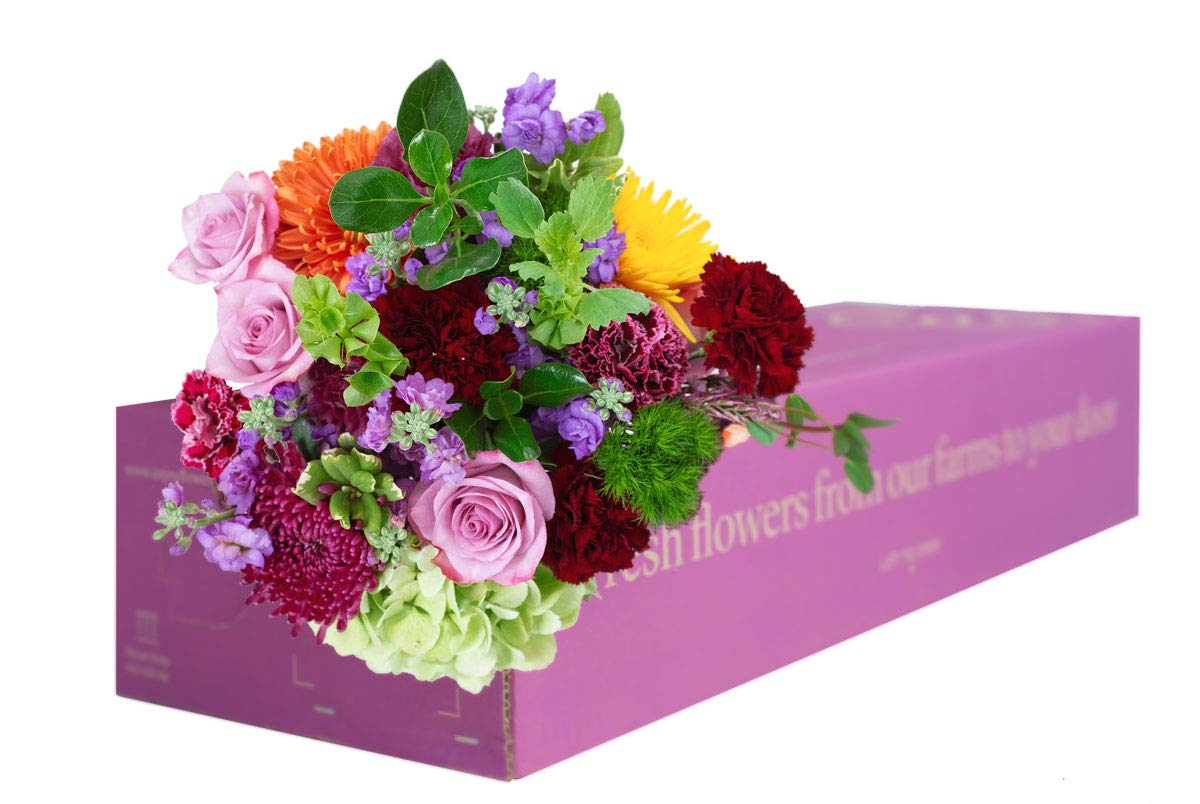 15% OFF: Enjoy Flowers - 3 Months Flower Subscription with Free Delivery. Farm Fresh Freshly Cut Mixed Flowers, Limited Time Offer! by Enjoy Flowers
