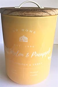 DW Home Richly Scented Sweet Melon + Pineapple Candle in Large Glossy Yellow Tumbler, 15 Oz.