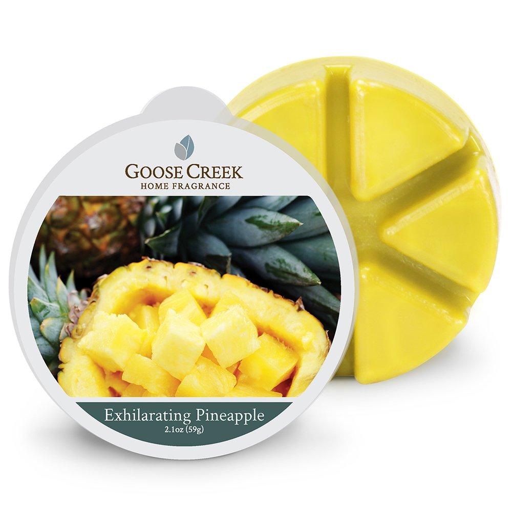 Goose Creek Exhilarating Pineapple candele di cera, giallo EW202
