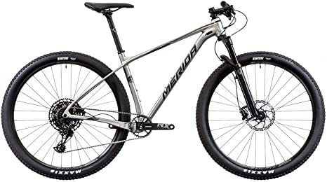 Merida Big.Nine NX-Edition - Bicicleta de montaña, titanio/plata ...