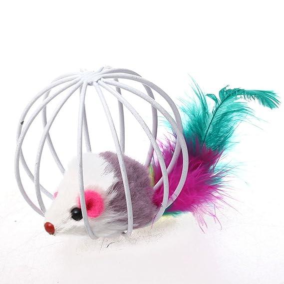 Amazon.com : Daycount 2Pcs Pet Kitten Cat Playing Mouse Rat Mice Ball Cage Toys Home Gatos Jouet Chat Juguetes para Gatos Katten Speelgoed (Random Color) ...