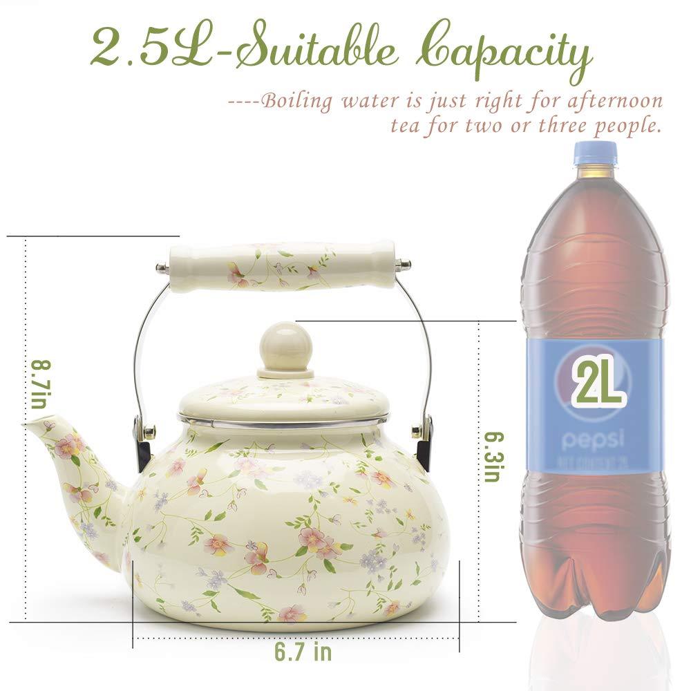 Enamel on Steel Tea Kettle, Porcelain Enameled Teapot, Halogen Induction Cooker Coffee Pot for Stovetop Retro Classic Design 2.5Qt Capacity by Alistar99 (Image #2)