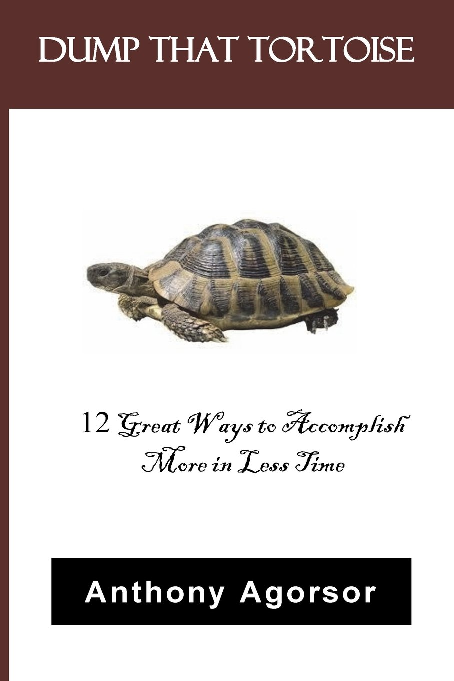 Dump that Tortoise: 12 Great Ways to Accomplish More in Less Time pdf