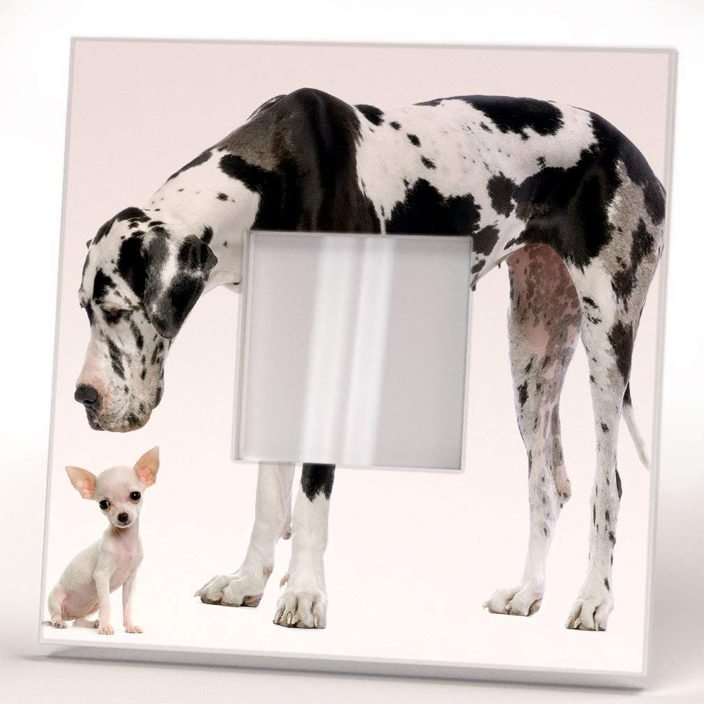 Chihuahua and Great Dane German Dogs Wall Framed Mirror Decor Pet Lovers Art Home Room Design Gift