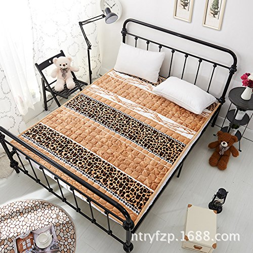 Washable Thin Futon mattress topper,Floor mat Foldable cushion mats Flannel Easy to clean-M 120x200cm(47x79inch) by hxxxy