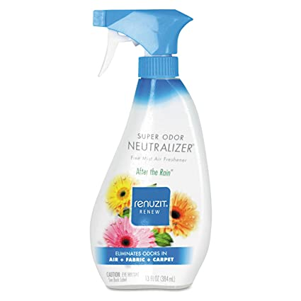 THE DIAL CORPORATION Super Odor Neurtalizer, 13oz, After the Rain