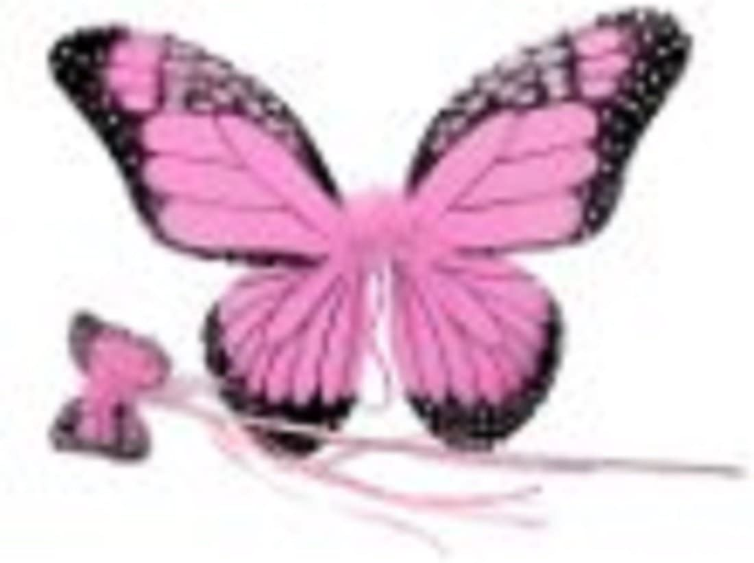 Amazon Com Monarch Butterfly Wing Wand Set More Colors