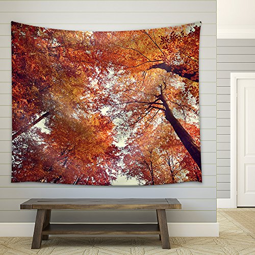 Beautiful autumn fall forest scene Fabric Wall Tapestry