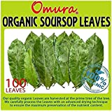 OMURA ORGANIC SOURSOP GRAVIOLA Leaves for Tea Pack of 100 Leaves ANTIOXIDANT RICH