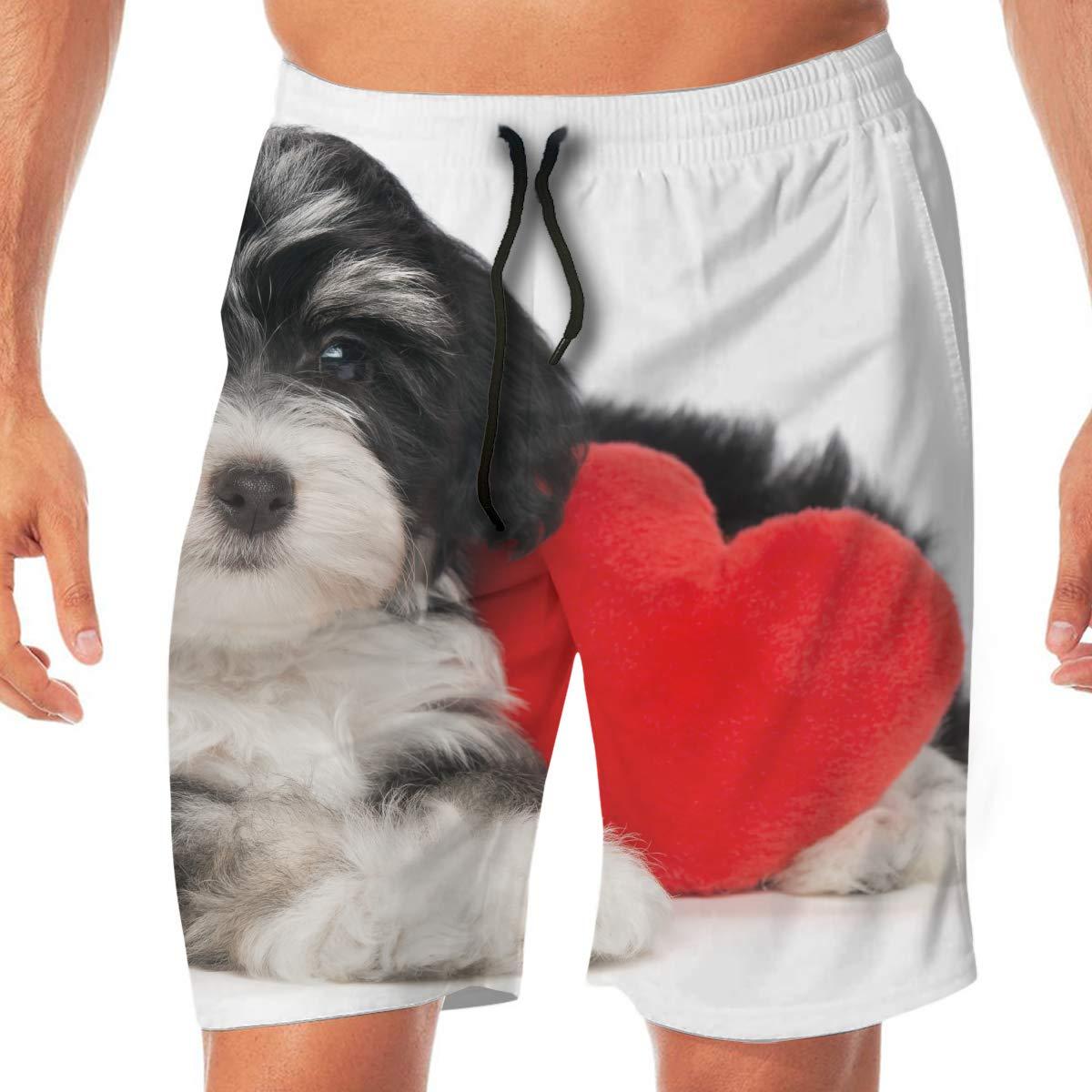 BEAQ45 Mens Summer Quick Dry Swim Trunks Dog Heart Printing Boardshort