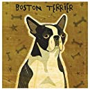 Thirstystone Occasions Coaster, Boston Terrier, Multicolor