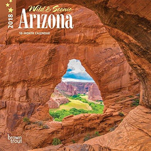 Arizona, Wild & Scenic 2018 7 x 7 Inch Monthly Mini Wall Calendar, USA United States of America Southwest State Nature