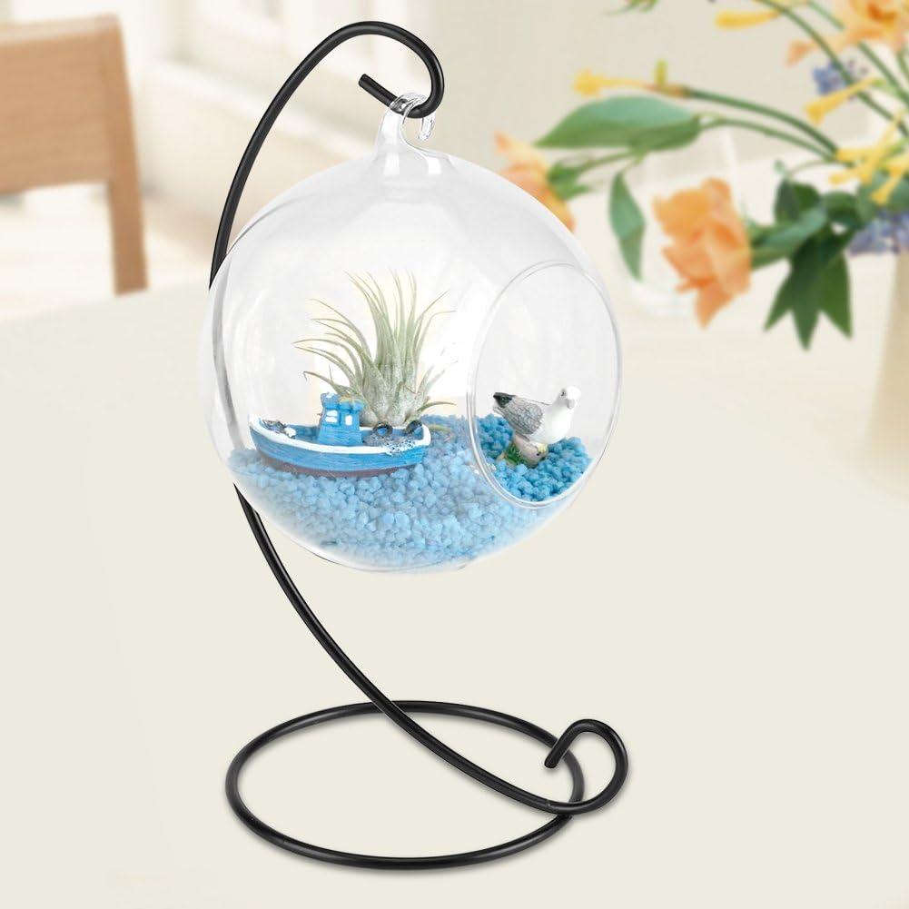 Asixx Pflanzen Terrarium H/ängenden Glasvase mit Eisenrahmen f/ür Luftpflanzen Echte Pflanzen oder Sukkulenten und getrocknetes Moos