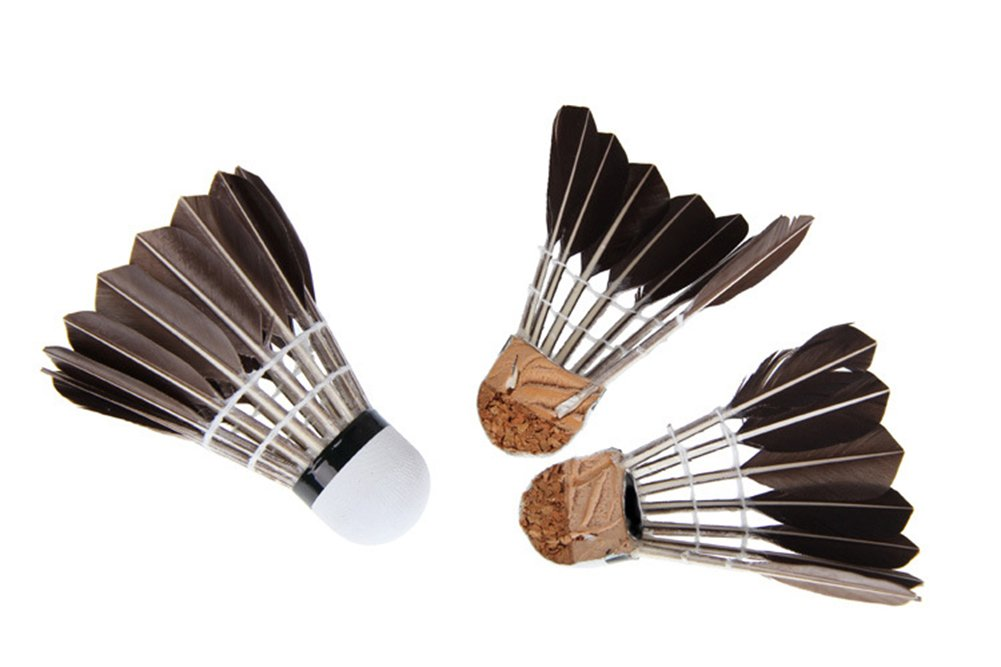 ZCQS 12pcs Black Goose Feather Badminton with Great Stability and Durability Goose Feathers Badminton Balls,Hight Speed Badminton Birdies Balls for Training,Game,Match,Outdoor Sports Exercise B07CZ95Q7X