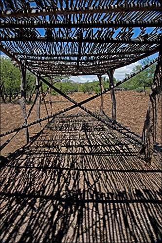 Southwest desert shade structure out of cactus ribs
