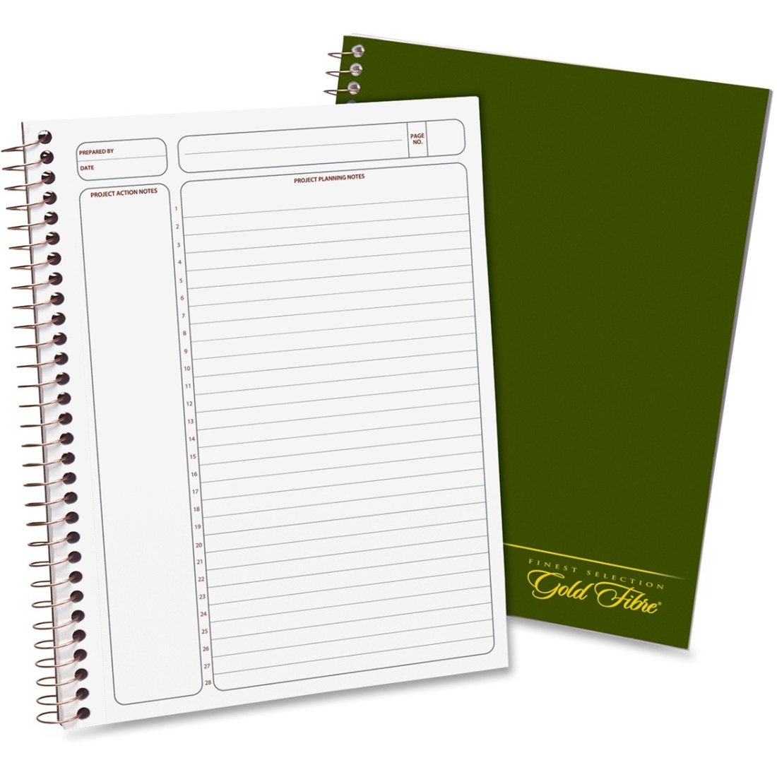 Amazon.com : Ampad Gold Fibre Classic Project Planner - 3 Pack ...