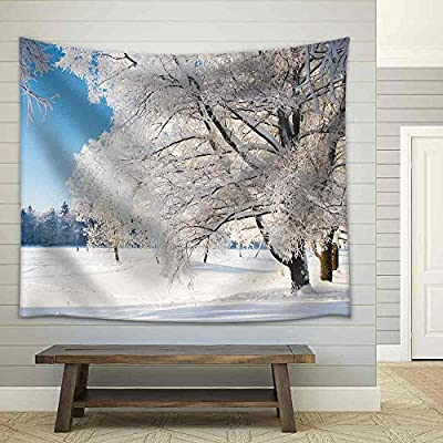 Professional Creation, Grand Expertise, Winter Park in Snow Fabric Wall