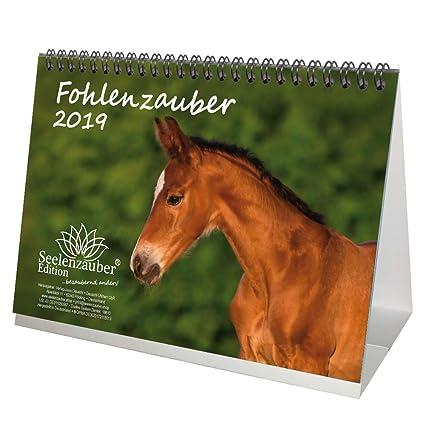 Magic Foals - Calendario de escritorio DIN A5 2019 ·Caballos ...