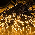 100ft/30m Warm White 300 LED Outdoor & Indoor Battery Fairy Lights w/ Remote & Timer, Waterproof (8 Modes, 4 x AA batteries, Dimmable, Dark green Cable)