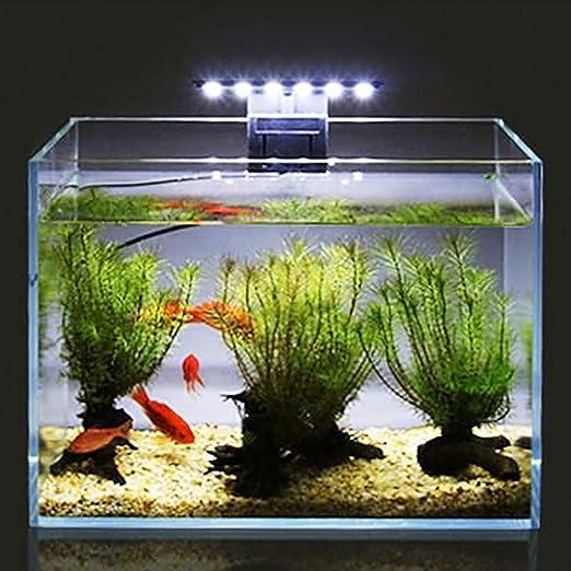 Hergon LED de ahorro de energía, luz de acuario, resistente al agua, lámpara